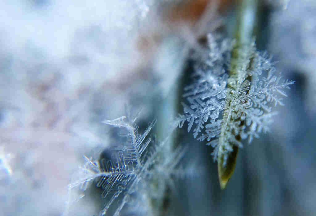 I cristalli di ghiaccio nella foto per salutarti in questo 2017, che sta per finire. Buona feste da Katrin Walter di simply walter. Foto: Unsplash (Aaron Burden)