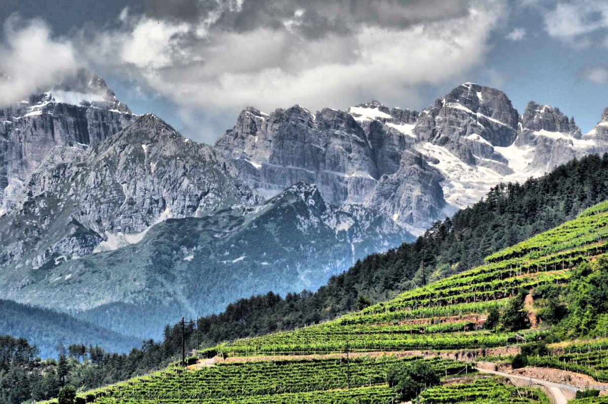 Val di Cembra con vigneti e le montagne in estate. Foto: Luciano Lona