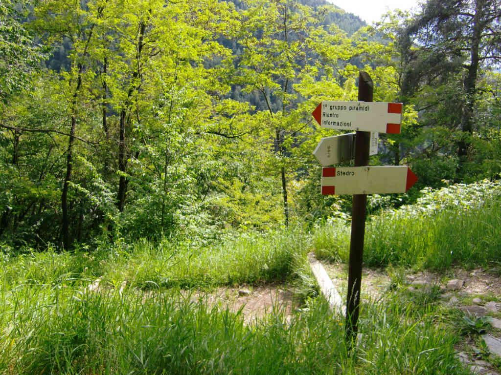 Una indicazione di sentieri in Val di Cembra. Foto: Katrin Walter