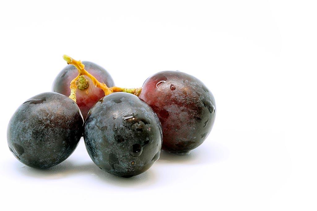 Come dal succo d'uva si fa il vino, dalle tue parole simply walter fa una traduzione tedesca a regola d'arte