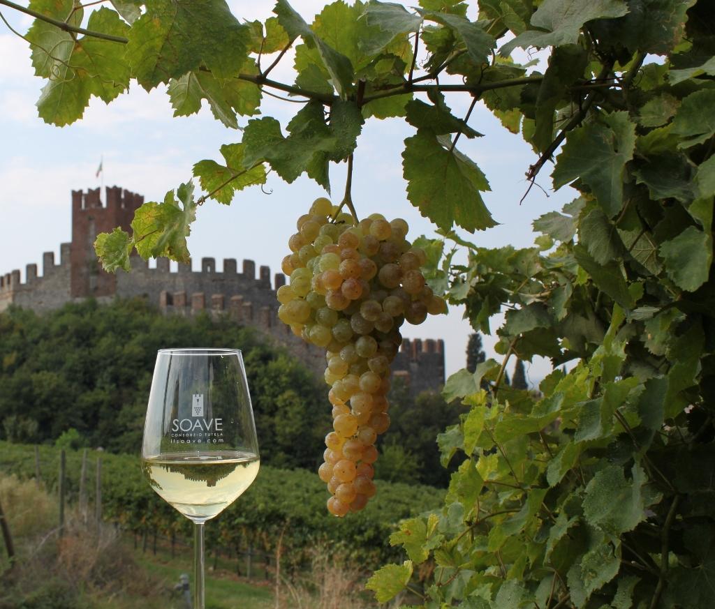 In foto un bel grappolo di Garganega, ingrediente principale per il vino Soave nel bicchiere accanto, con fondo il Castello di Soave. Foto: Consorzio Soave